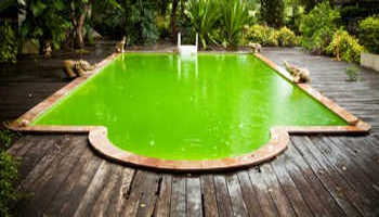 Comment rattraper l eau d une piscine verte for Eau trouble piscine